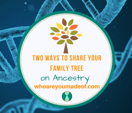 Two Ways to Share Your Family Tree on Ancestry_ How to Share Your Tree