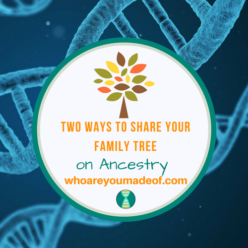 Two Ways to Share Your Family Tree on Ancestry: How to Share Your Tree