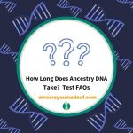 How Long Does Ancestry DNA Take_ Test FAQs