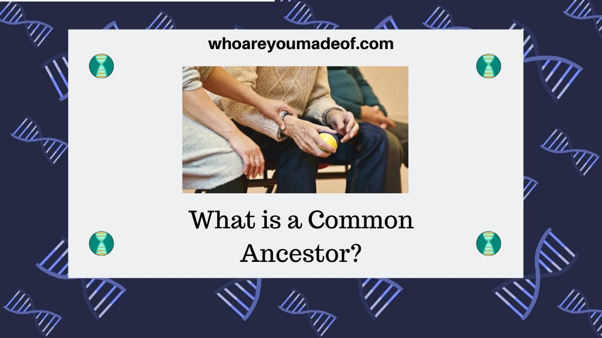 What is a Common Ancestor