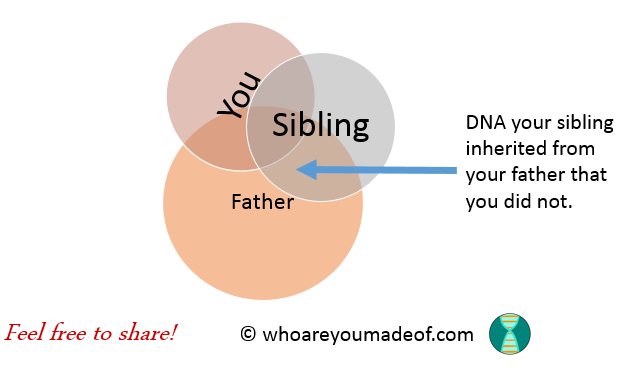 Why Does My Sibling Have DNA That I Don't Have