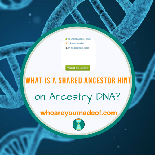 What is an Ancestry DNA Shared Ancestor Hint?
