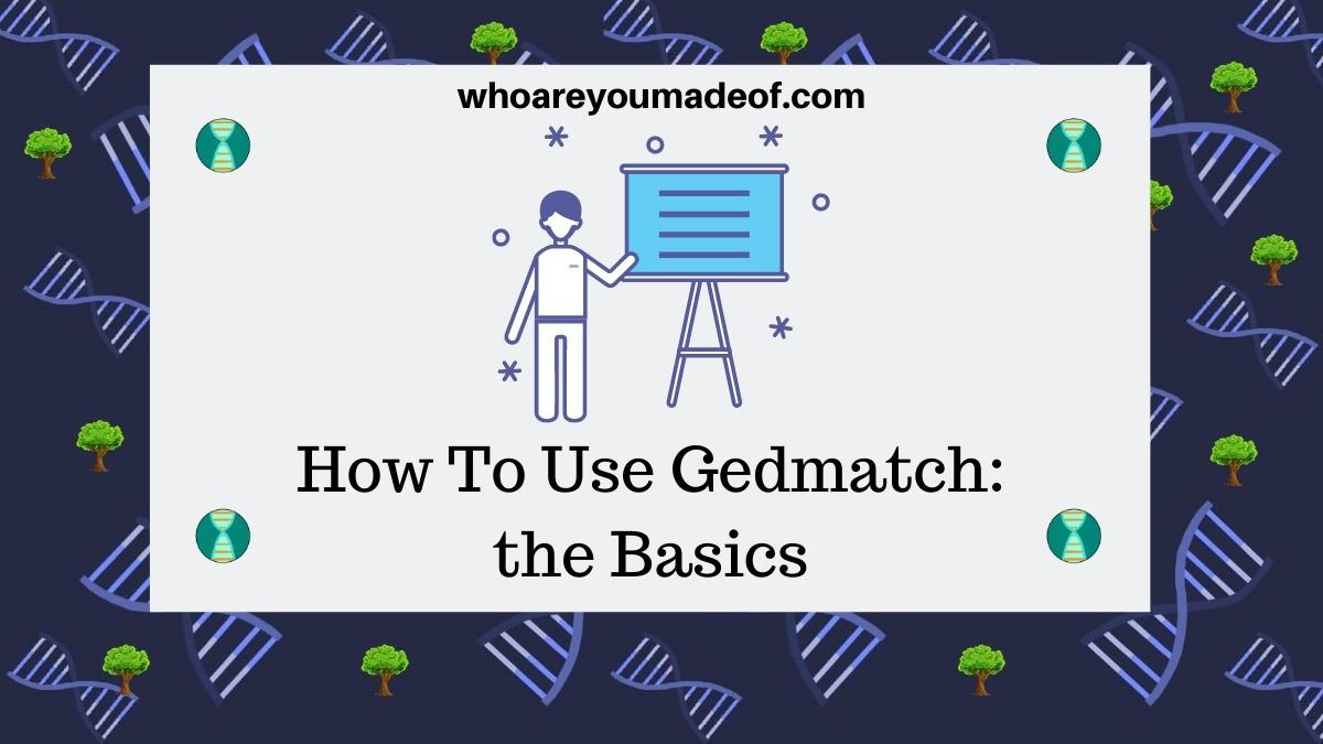 How To Use Gedmatch the Basics