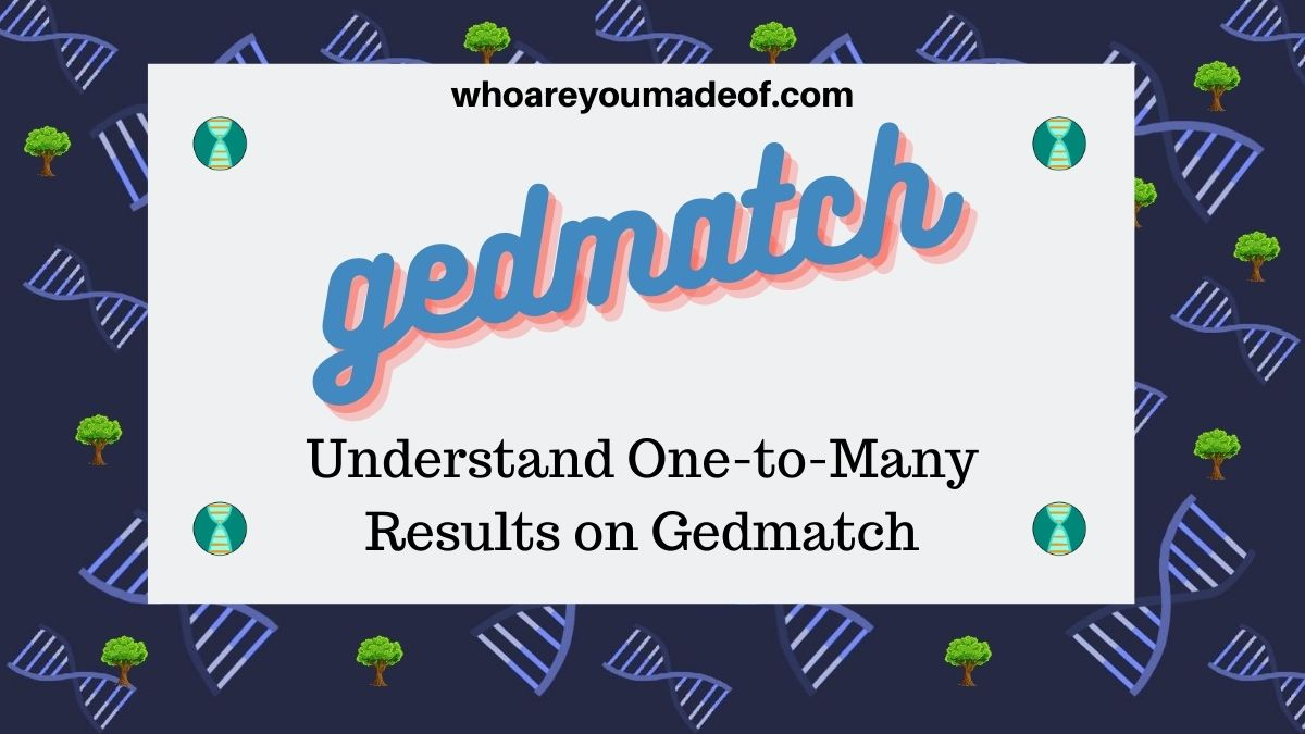 Understand One-to-Many Results on Gedmatch