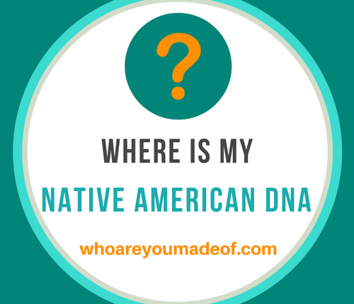 why didn't any Native american DNA show up in my results