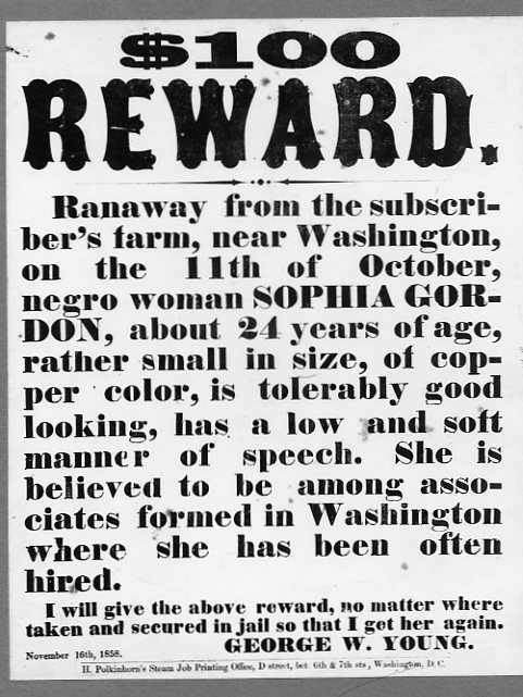 Newsaper clipping runaway slave DNA ancestry