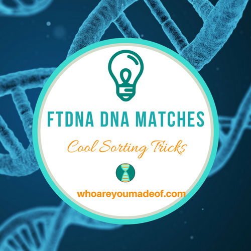 FTDNA Family Finder Matches:  Cool Sorting Tricks