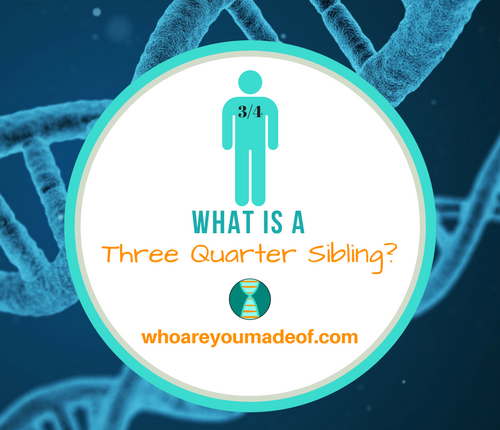 What is a Three Quarter Sibling_