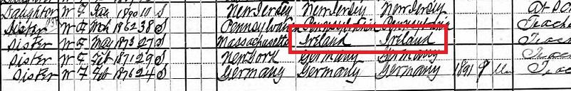Irish ancestor on census records