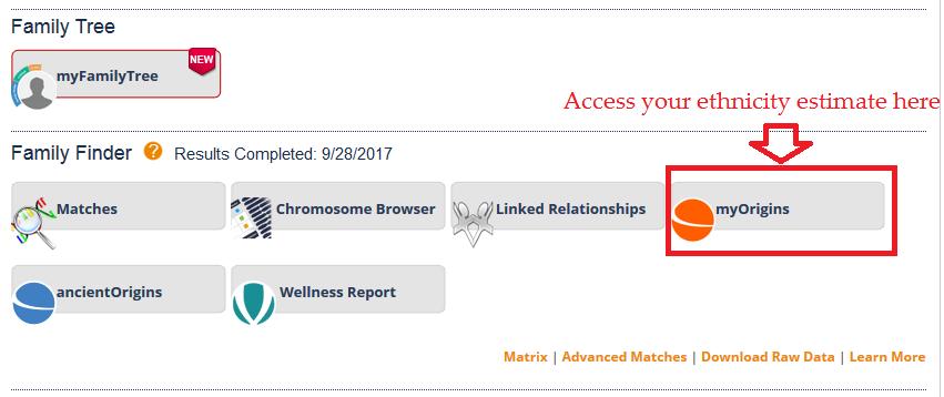 how to access myorigins on FTDNA