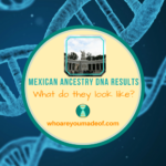 What do Mexican Ancestry DNA Results Look Like_