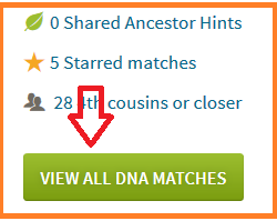 where to click to see your DNA matches on Ancestry DNA