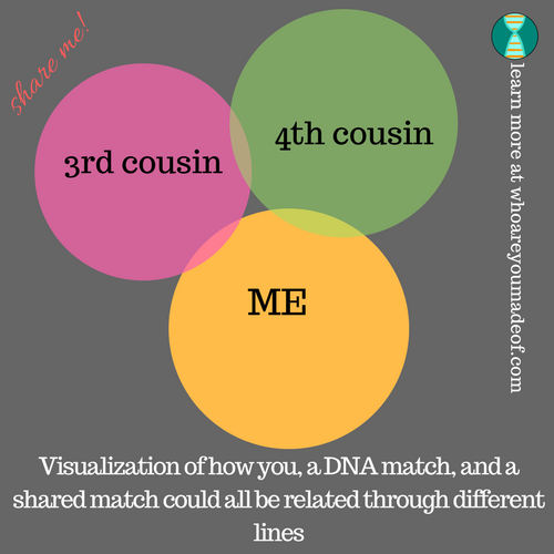visualization of a shared DNA match