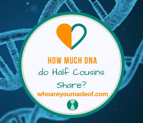 How Much DNA do Half Cousins Share_