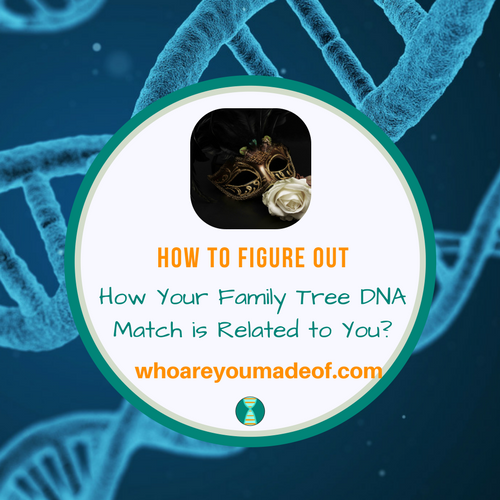How to Figure Out How Your Family Tree DNA Match is Related to You?