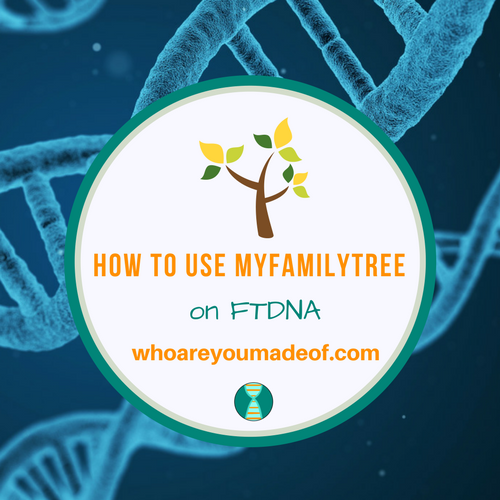 How to Use myFamilyTree on FTDNA