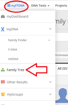 Alternative method to accessing family tree on Family Tree DNA