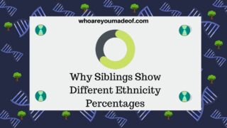 Why Siblings Show Different Ethnicity Percentages
