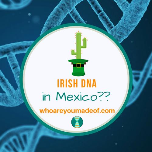 Irish DNA in Mexico?