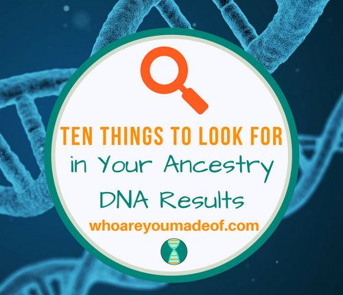 Ten Things to Look for in Your Ancestry DNA Results
