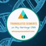 Triangulated Segments on My Heritage DNA