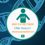 What is a First Cousin DNA Match_