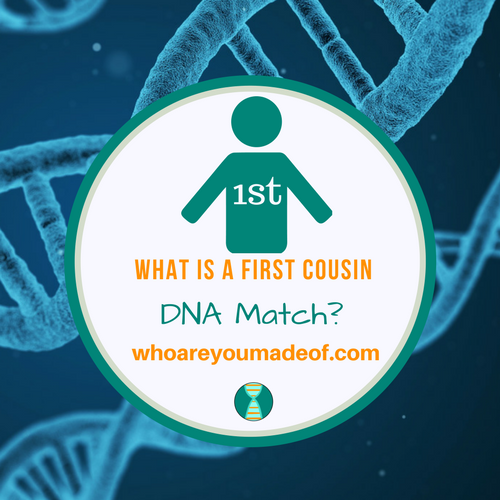 What is a First Cousin DNA Match?