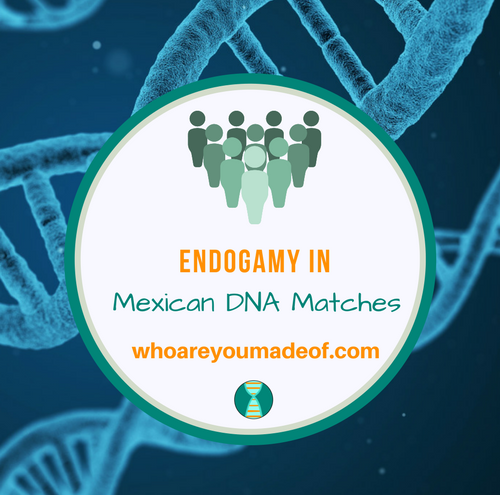 Endogamy in Mexican DNA Matches