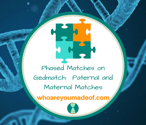 Phased Matches on Gedmatch_ Paternal and Maternal Matches