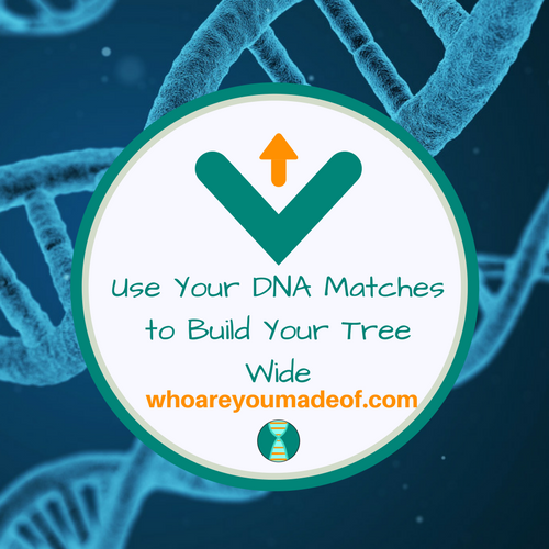 Use Your DNA Matches to Build Your Tree Wide
