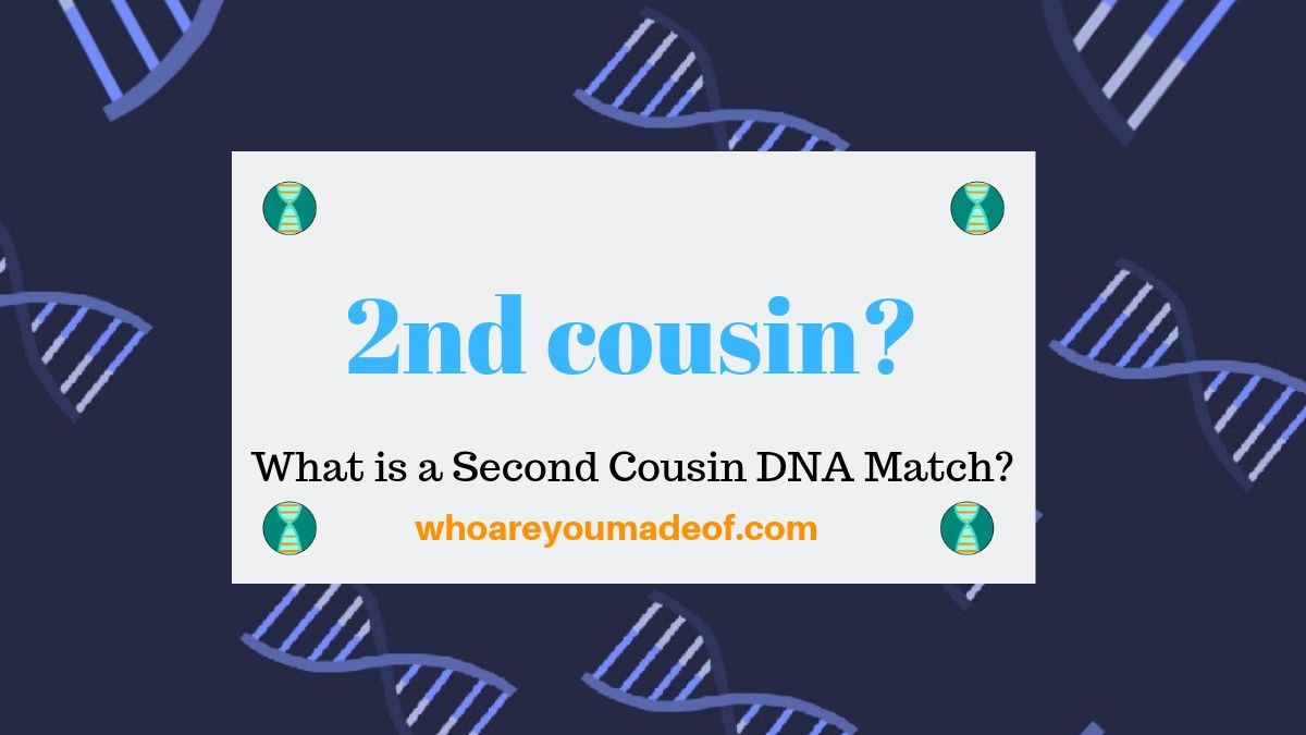 What is a Second Cousin DNA Match?