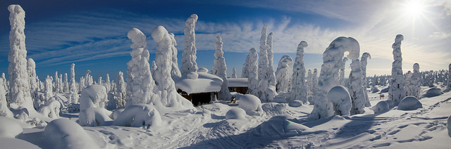 What does it look like in Finland?