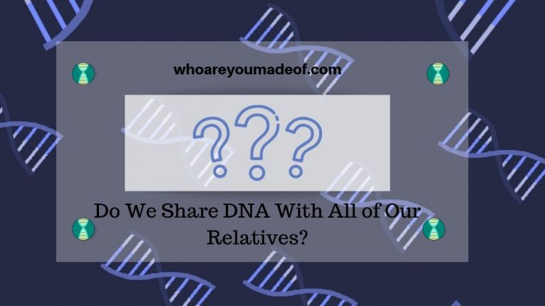 Do We Share DNA With All of Our Relatives_