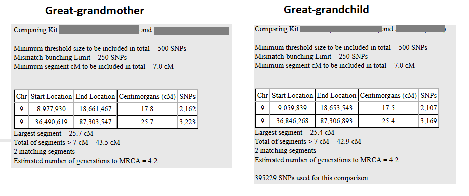 DNA segments staying same size over generations