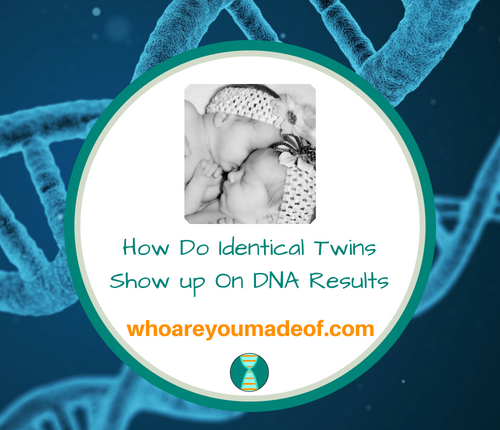How Do Identical Twins Show up On DNA Results