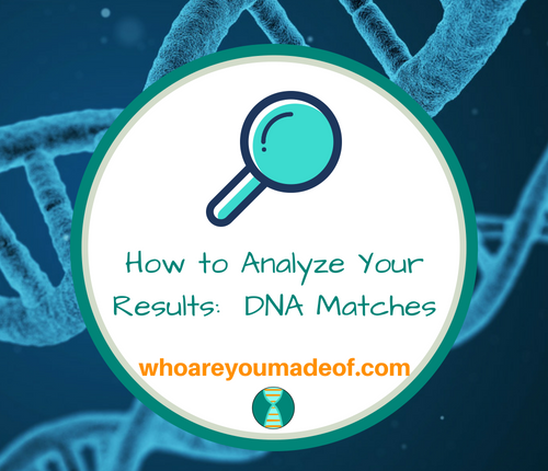 How to Analyze Your Results_ DNA Matches