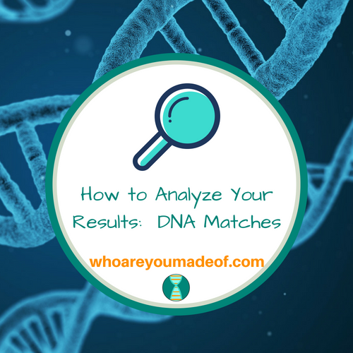 How to Analyze Your Results:  DNA Matches