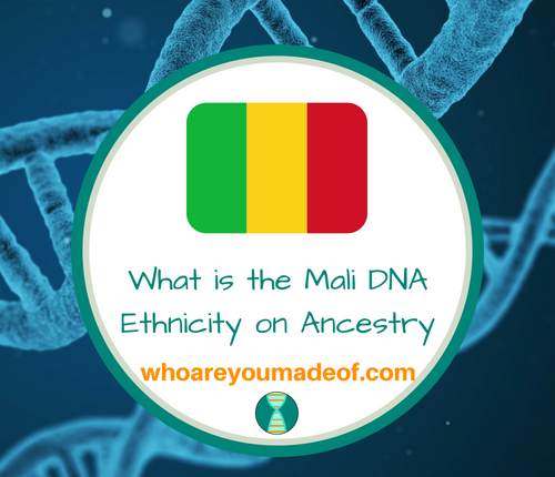 What is the Mali DNA Ethnicity on Ancestry