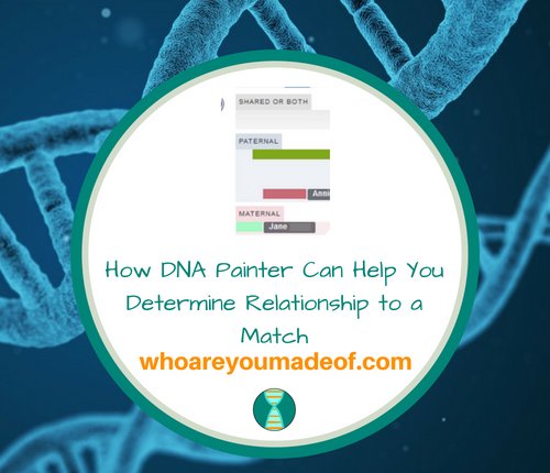 How DNA Painter Can Help You Determine Relationship to a Match