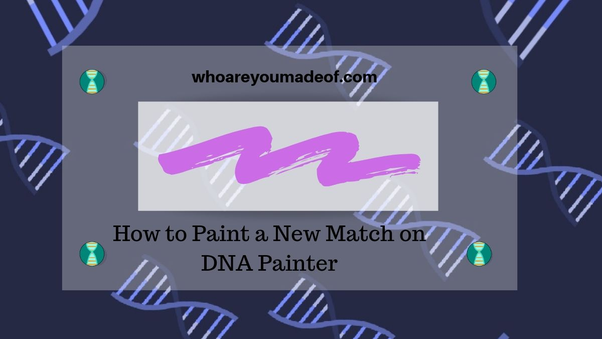 How to Paint a New Match on DNA Painter
