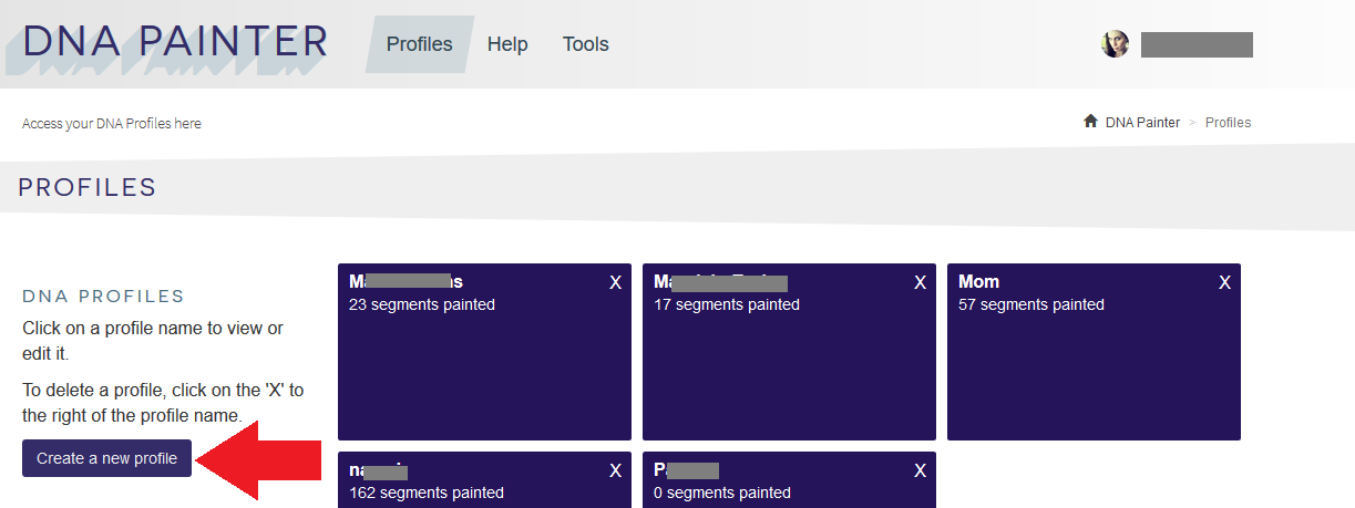 Alternative method for creating profile in DNA Painter
