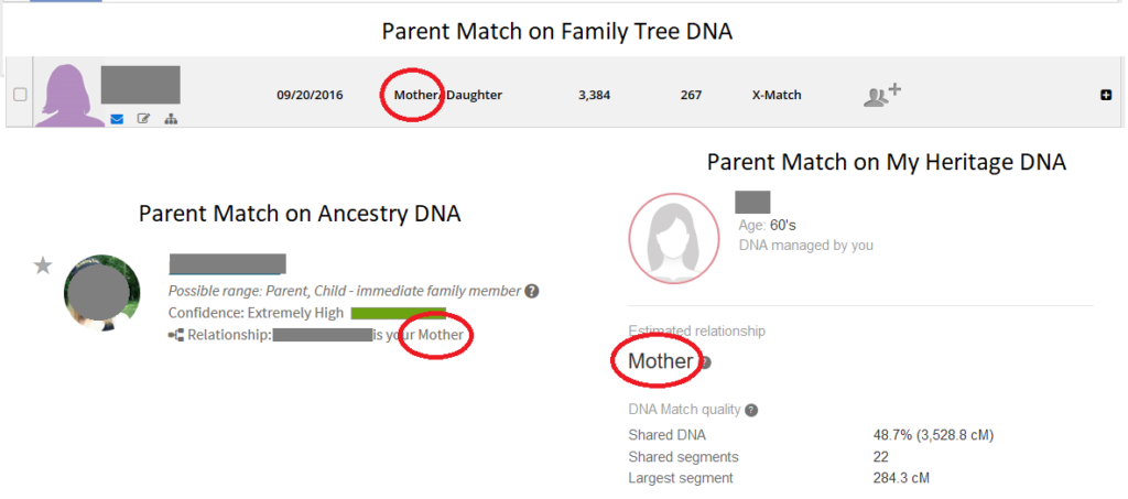 Example of parent DNA match across three testing companies, shows number of shared centimorgans for two sites