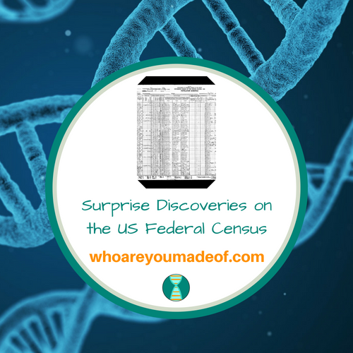 Surprise Discoveries on the US Federal Census