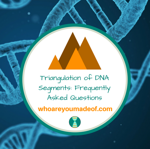Triangulation of DNA Segments_ Frequently Asked Questions