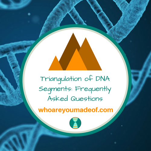 Triangulation of DNA Segments: Frequently Asked Questions
