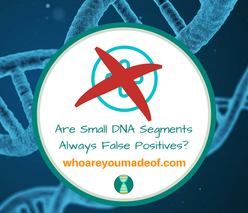 Are Small DNA Segments Always False Positives_