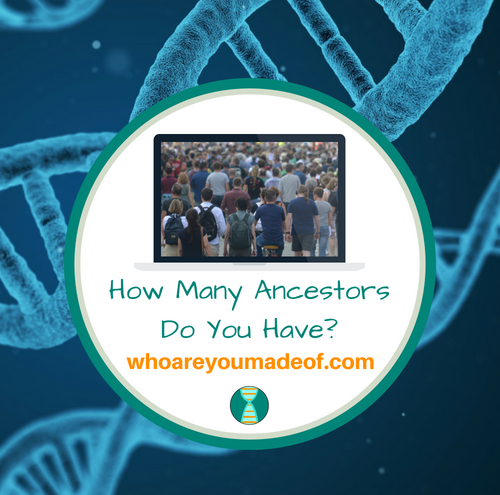 How Many Ancestors Do You Have_(1)