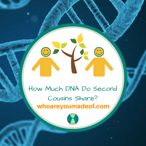 How Much DNA Do Second Cousins Share?