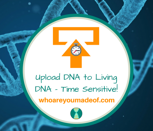Upload DNA to Living DNA - Time Sensitive!