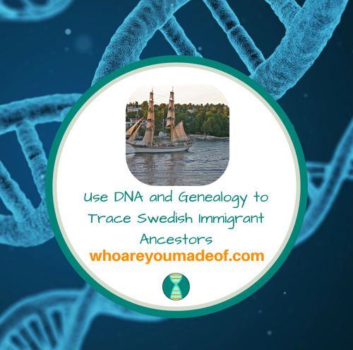 Use DNA and Genealogy to Trace Swedish Immigrant Ancestors